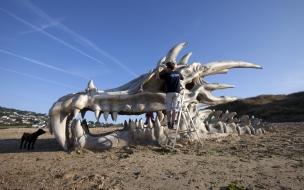 Cráneo gigante de Dragon