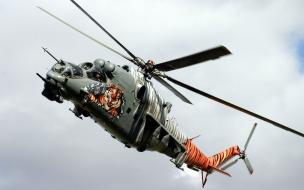 Helicóptero y tigre