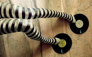 Medias rayadas y discos