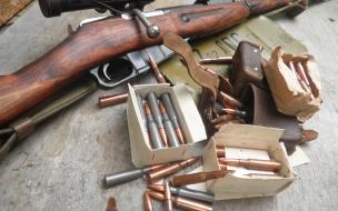 Carabina de cerrojo y balas