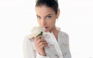 Barbara Palvin y una rosa