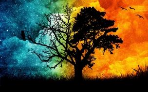 Un árbol de dos colores