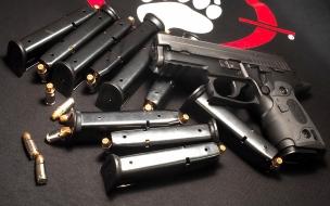 Una pistola y sus cacerinas