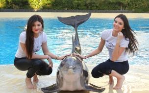 Chicas y un delfín