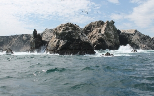La Isla Foca Paita