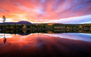 Bellos reflejos en un lago