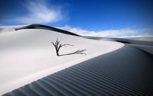 Dunas en el desierto