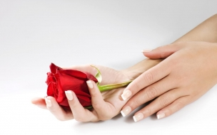 Manos y una rosa
