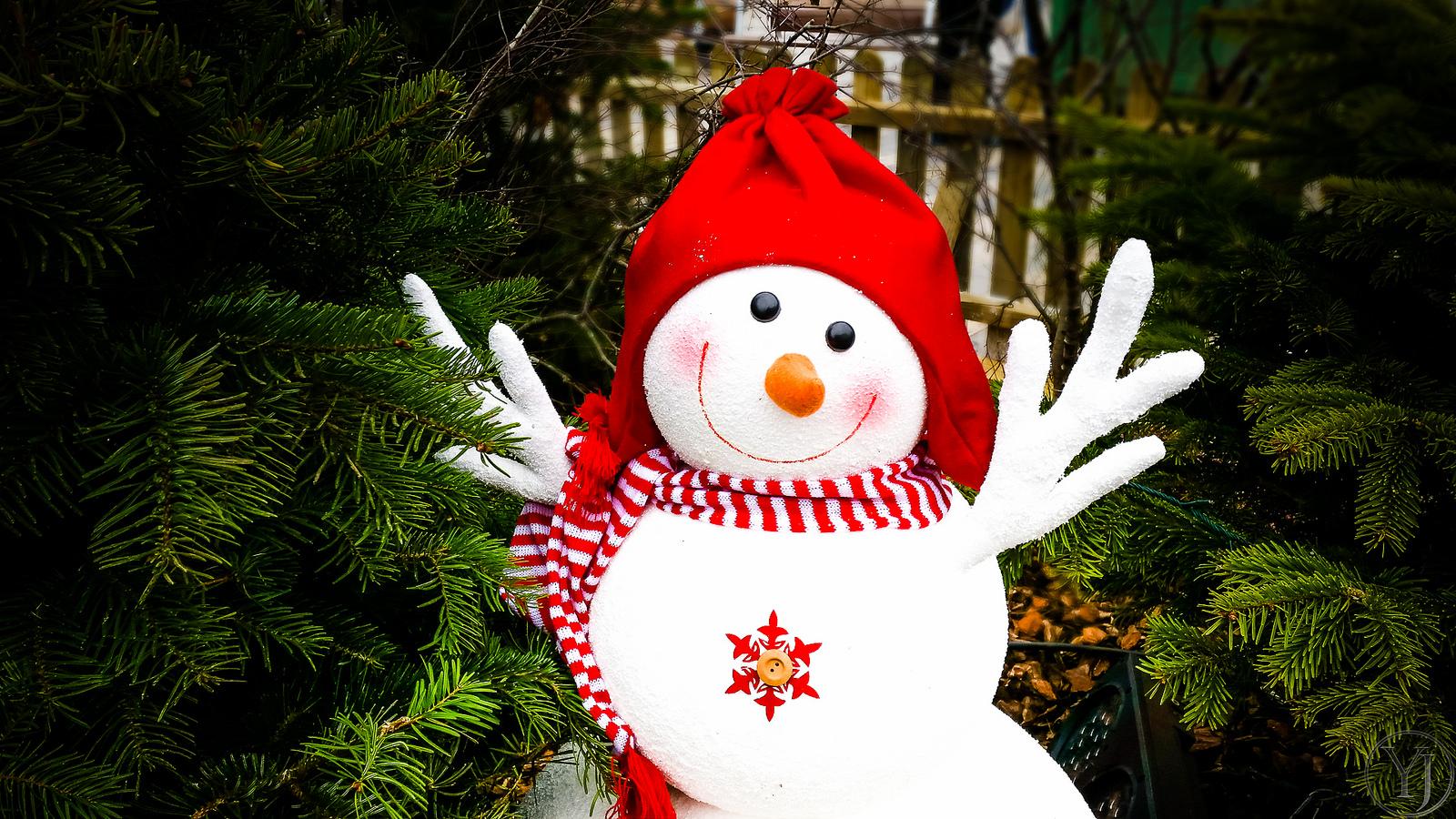 Adorable muñeco de las nieves - 1600x900