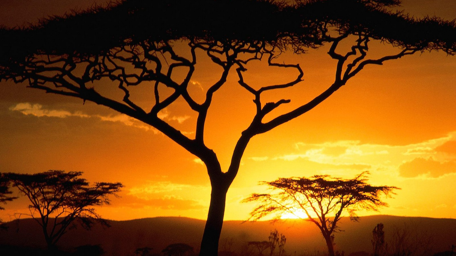 south african sunset landscape background hd