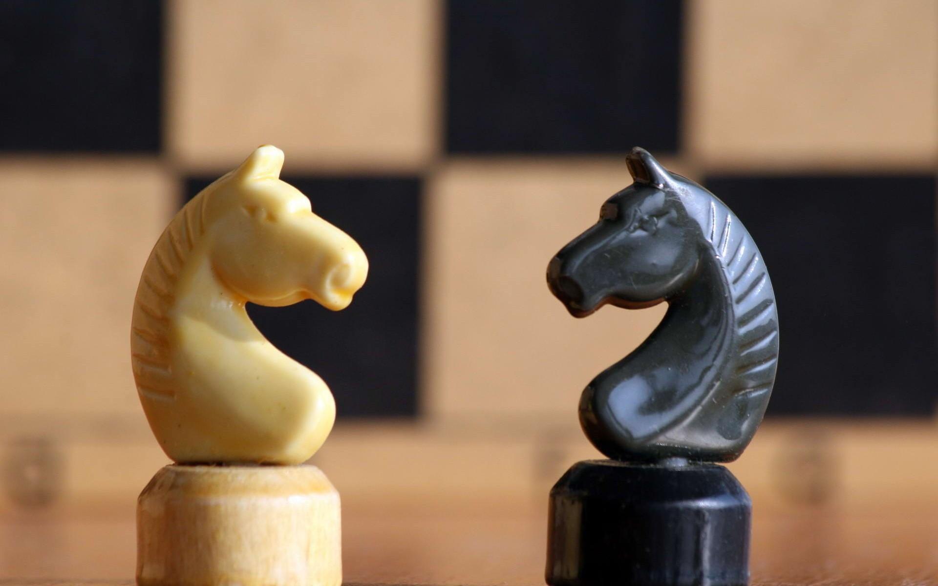 Caballos de ajedrez - 1920x1200