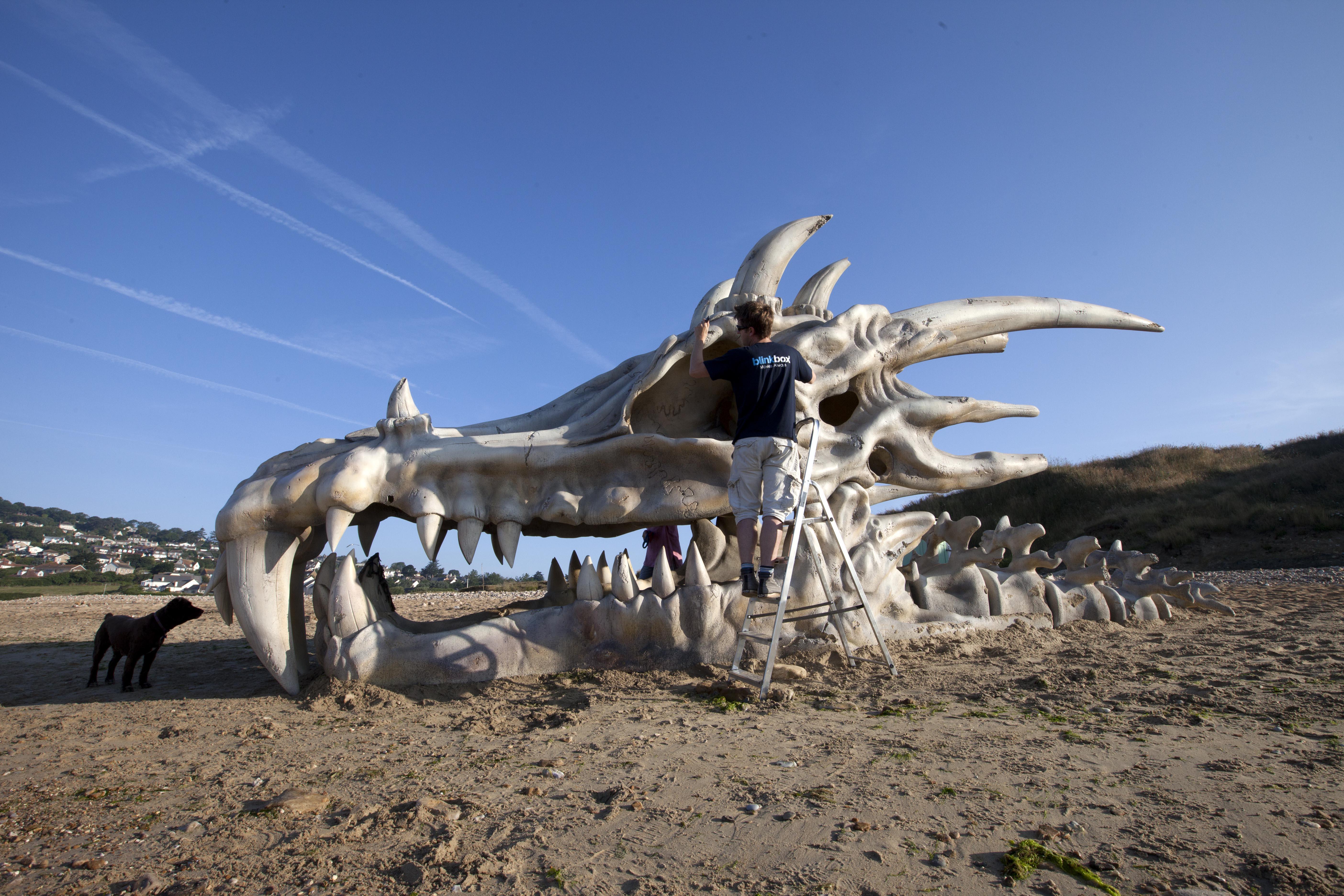 Cráneo gigante de Dragon - 5616x3744