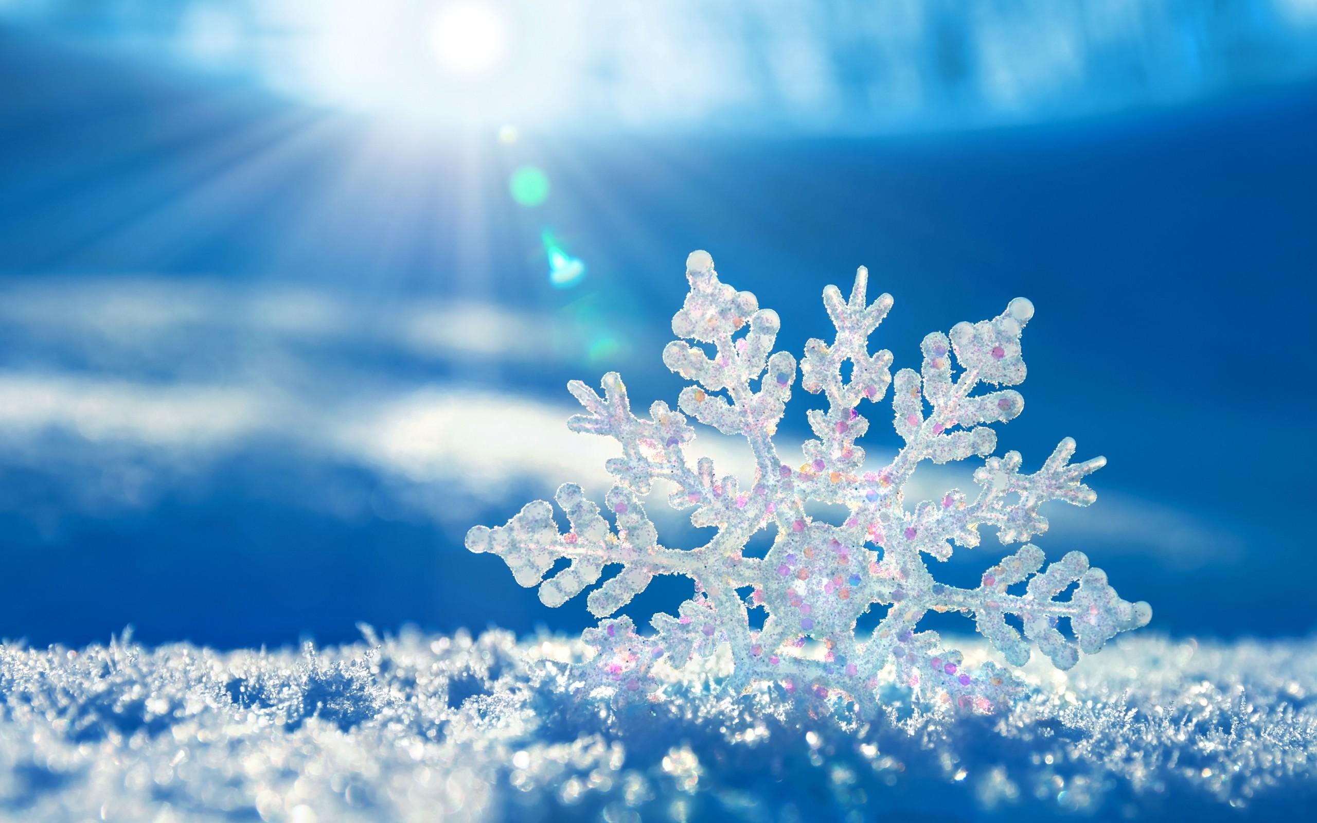Cristal de hielo - 2560x1600