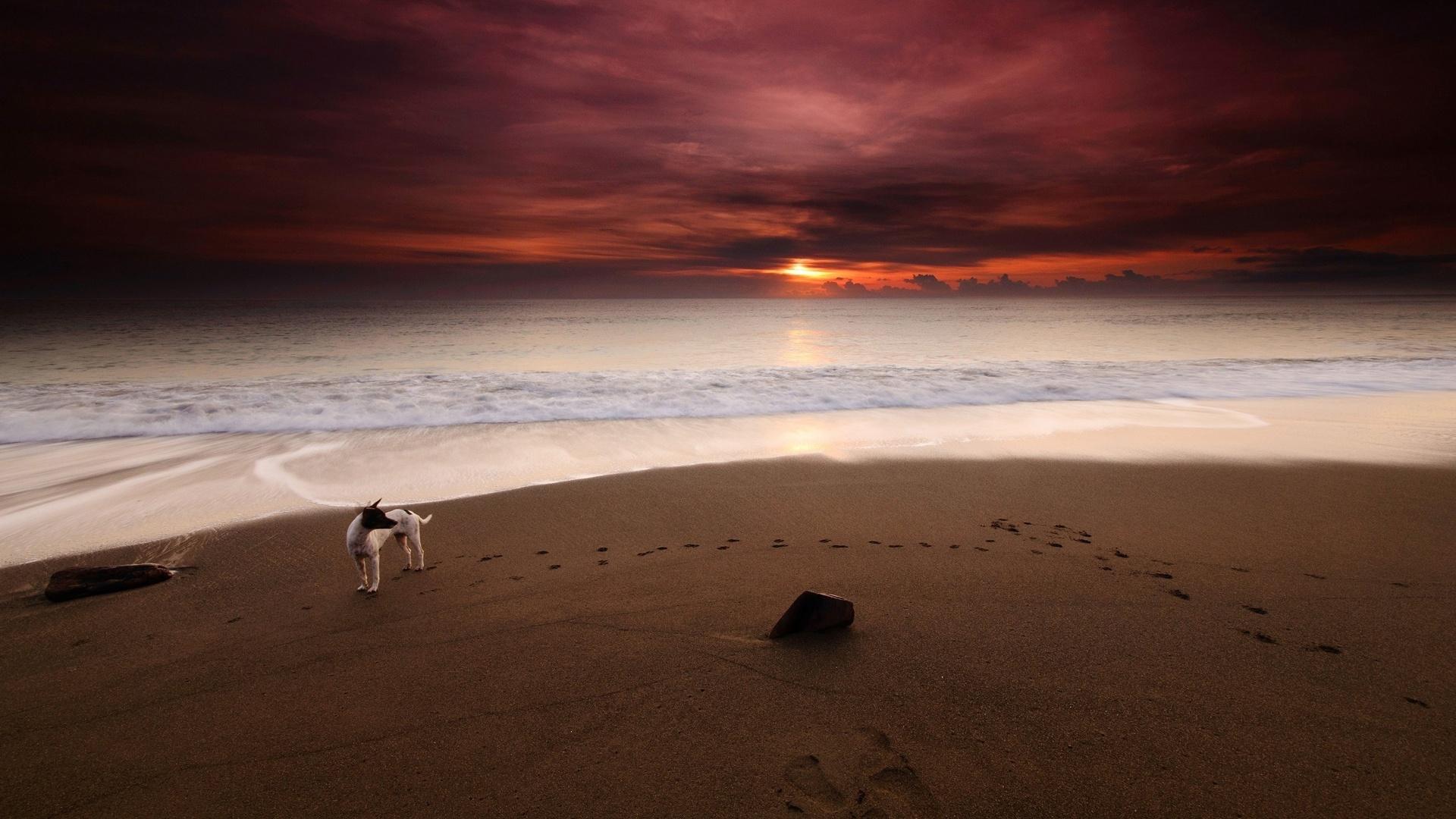 Fotografia con flash en playas - 1920x1080