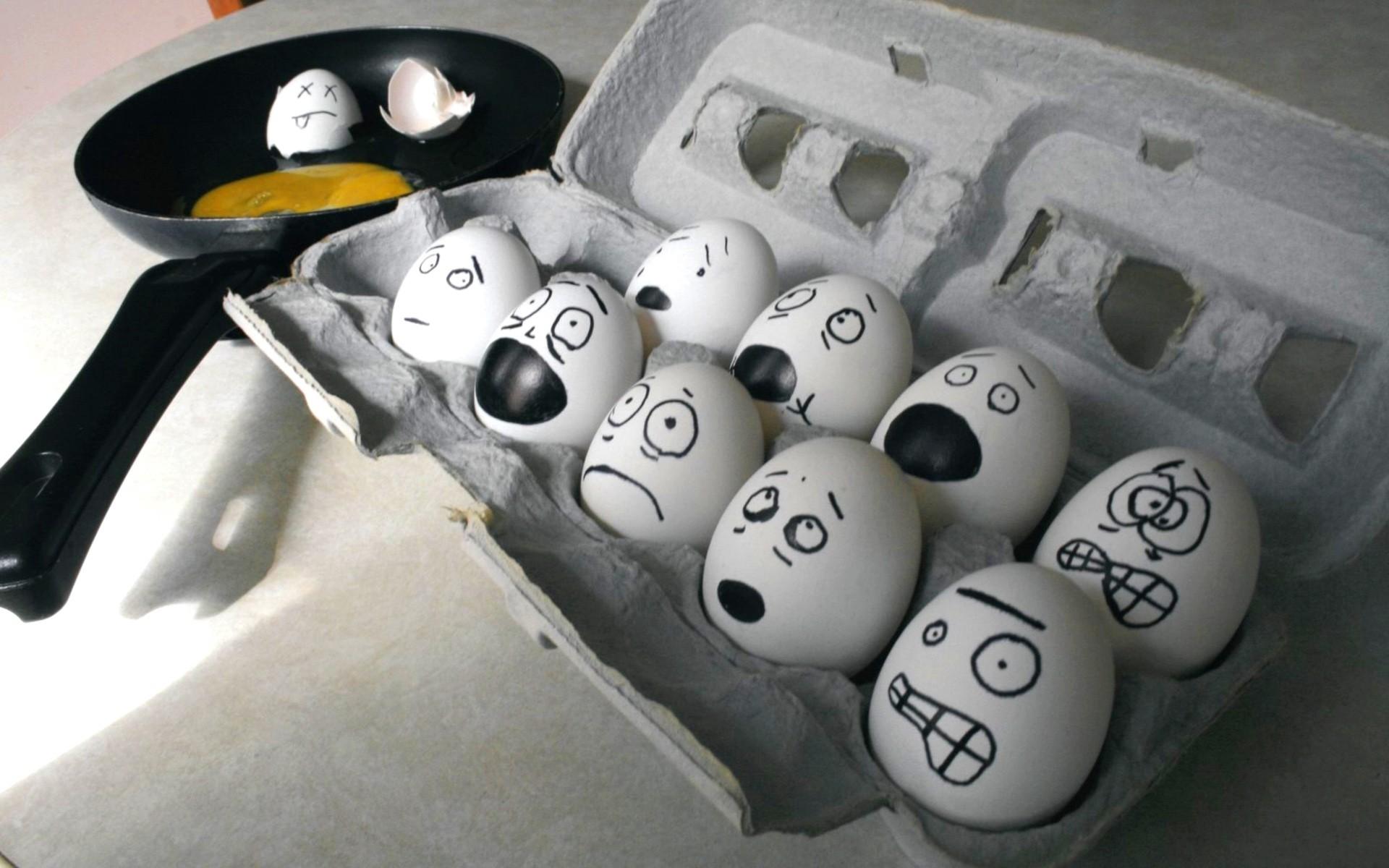 Huevos graciosos - 1920x1200