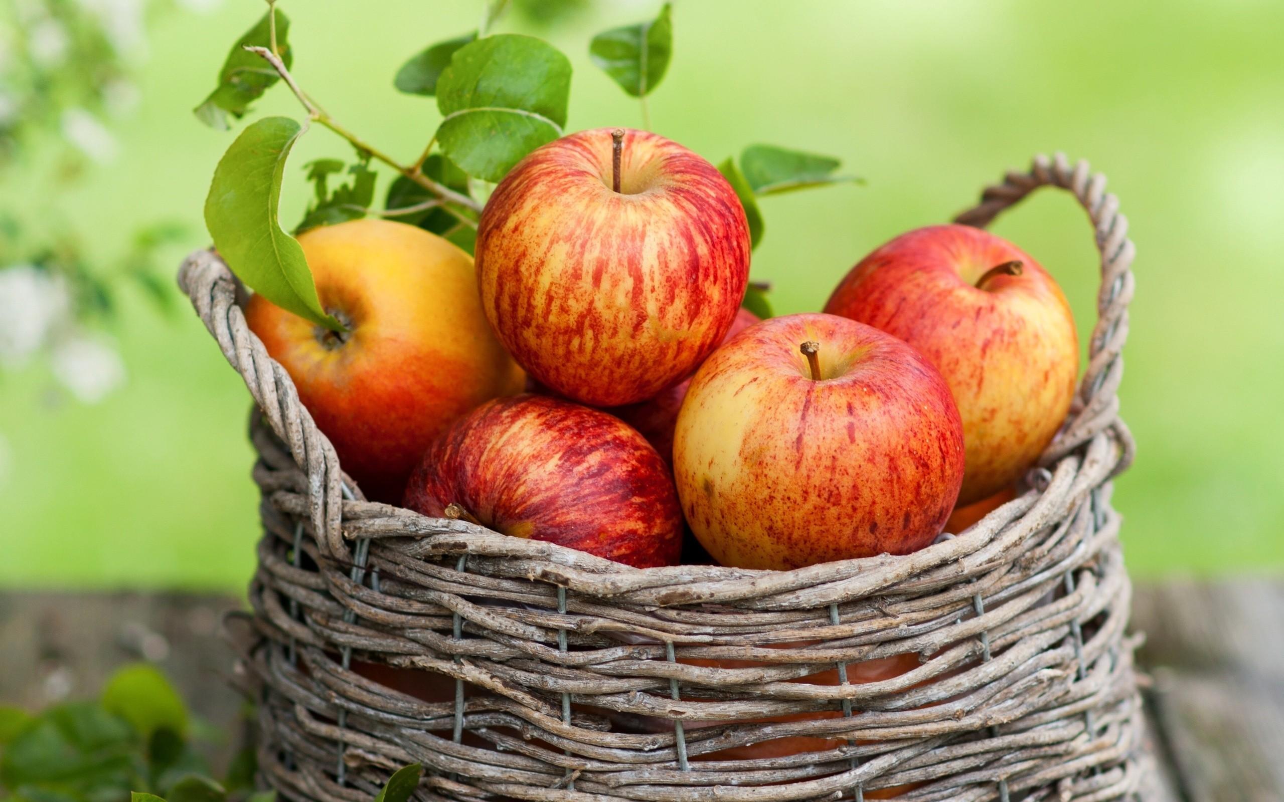 Manzanas en canasta - 2560x1600