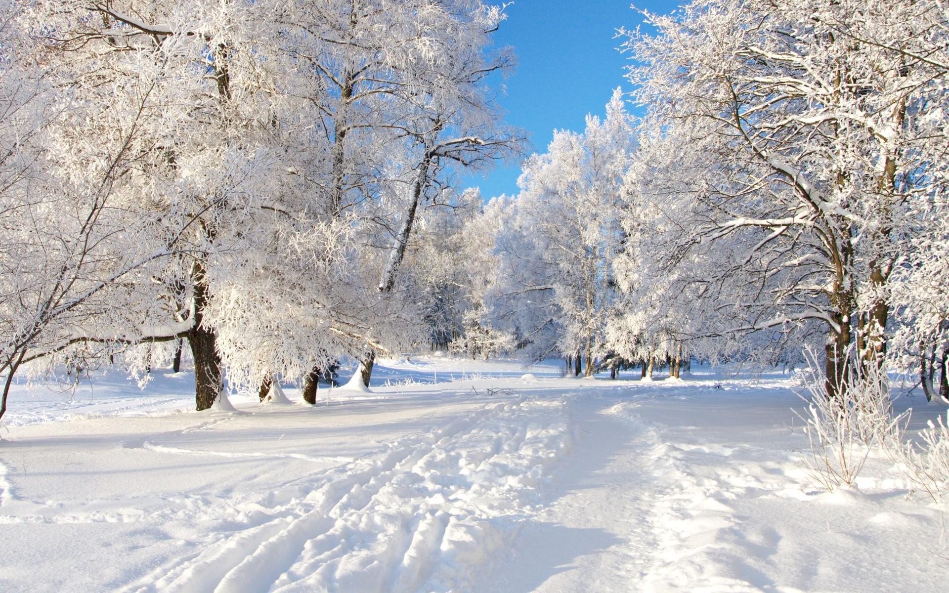 Nieve en las ciudades por navidad - 1920x1200