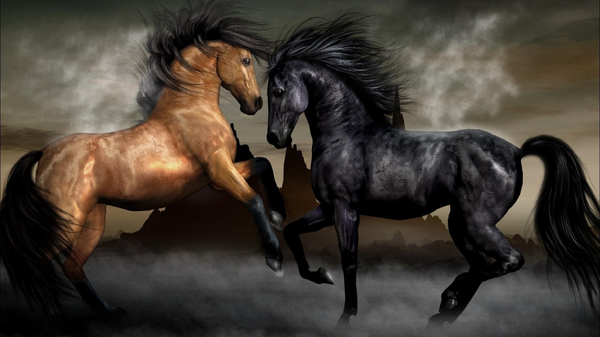 Pelea de caballos - 1920x1080
