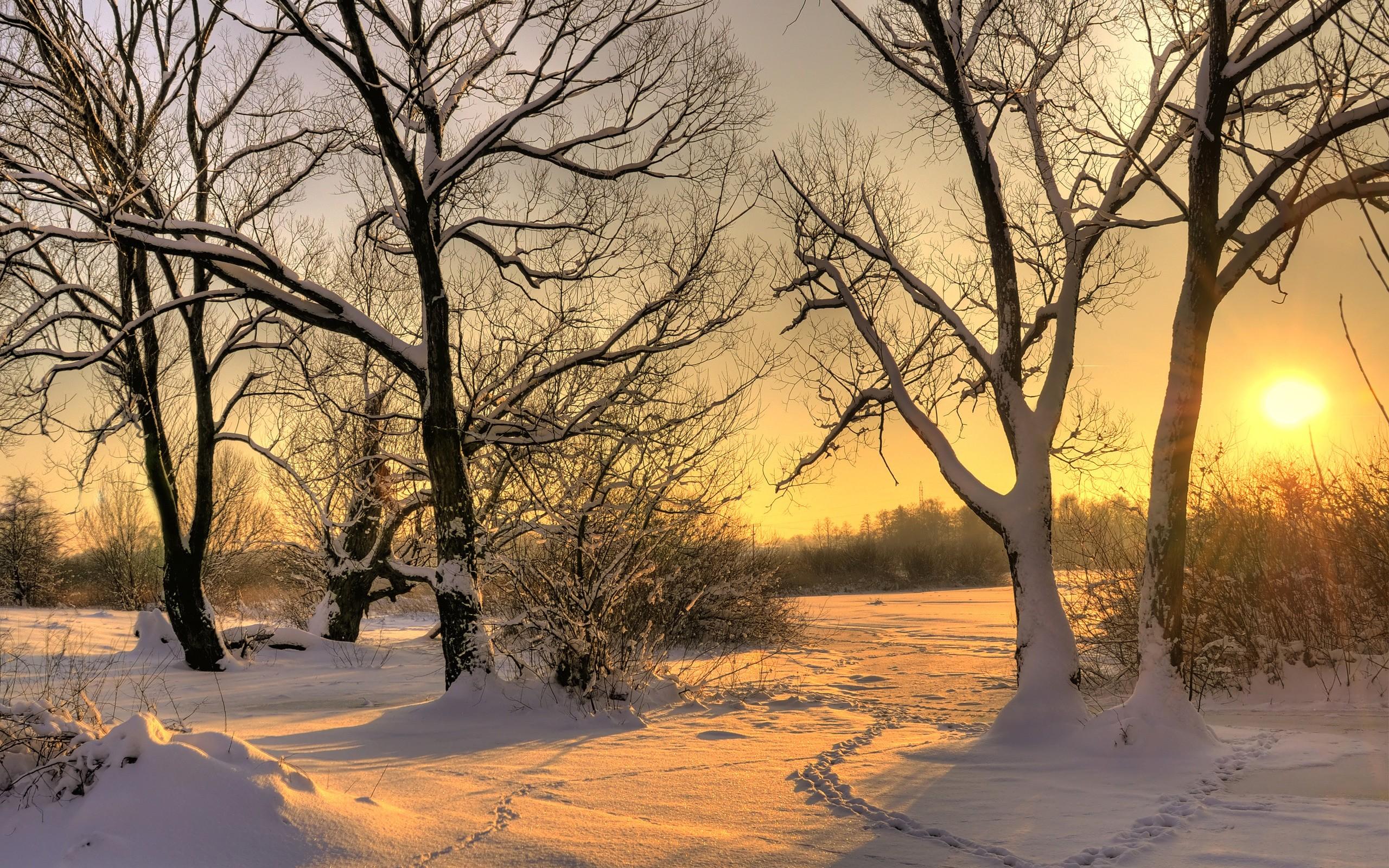 Puesta de sol en California con nieve - 2560x1600