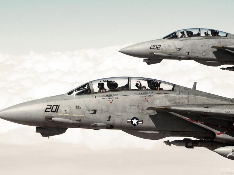 Aviones F 14 Tomcat - 800x600