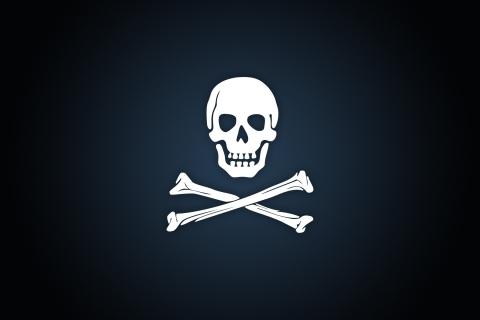 Calavera de piratas - 480x320