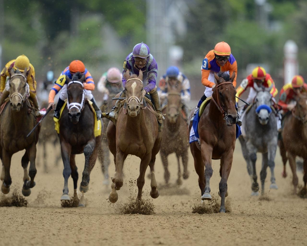 Carreras de caballos - 1280x1024
