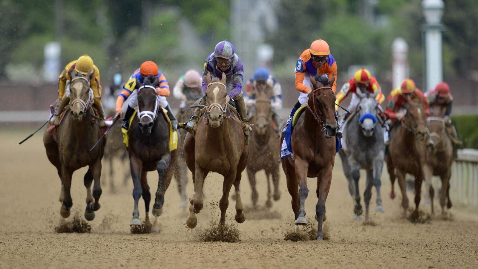 Carreras de caballos - 1600x900