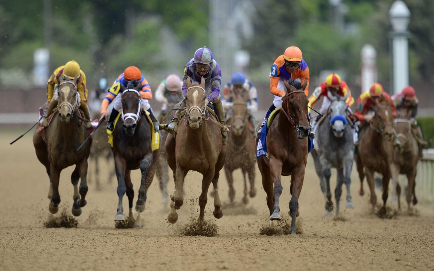Carreras de caballos - 1680x1050