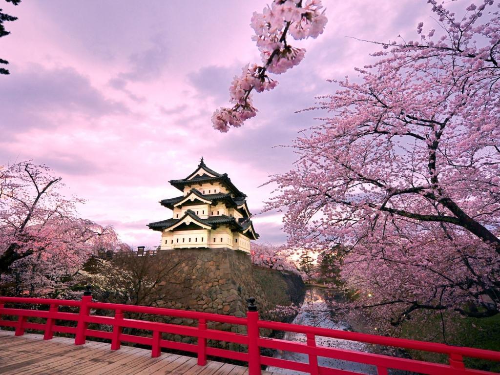 Castillo Japonés - 1024x768