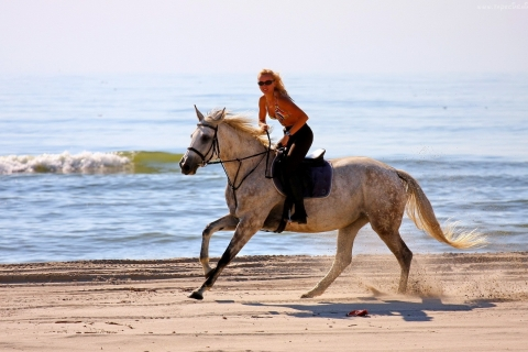 Chica paseando a caballo - 480x320