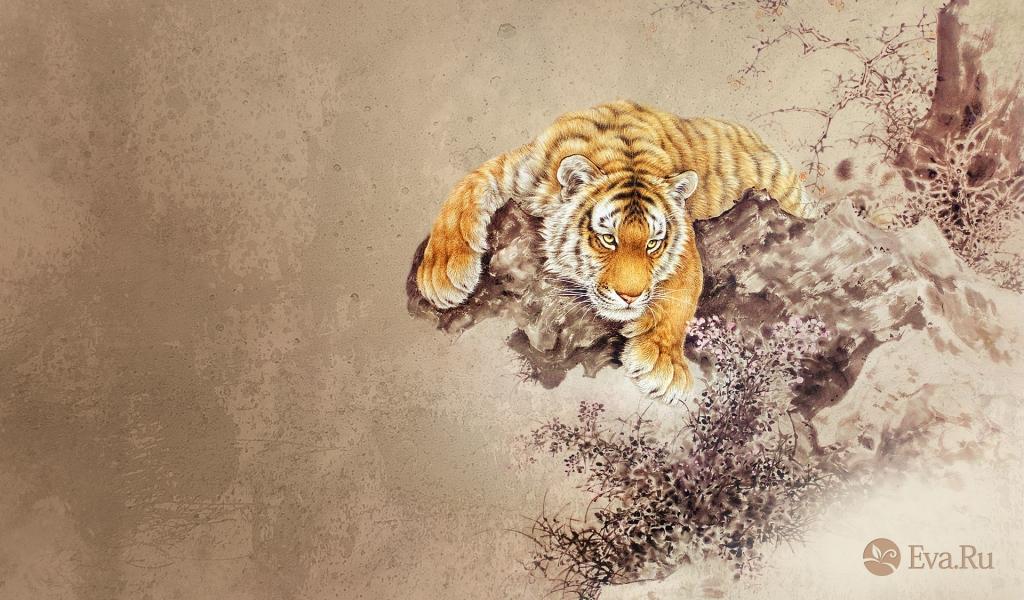 Dibujo de un tigre - 1024x600