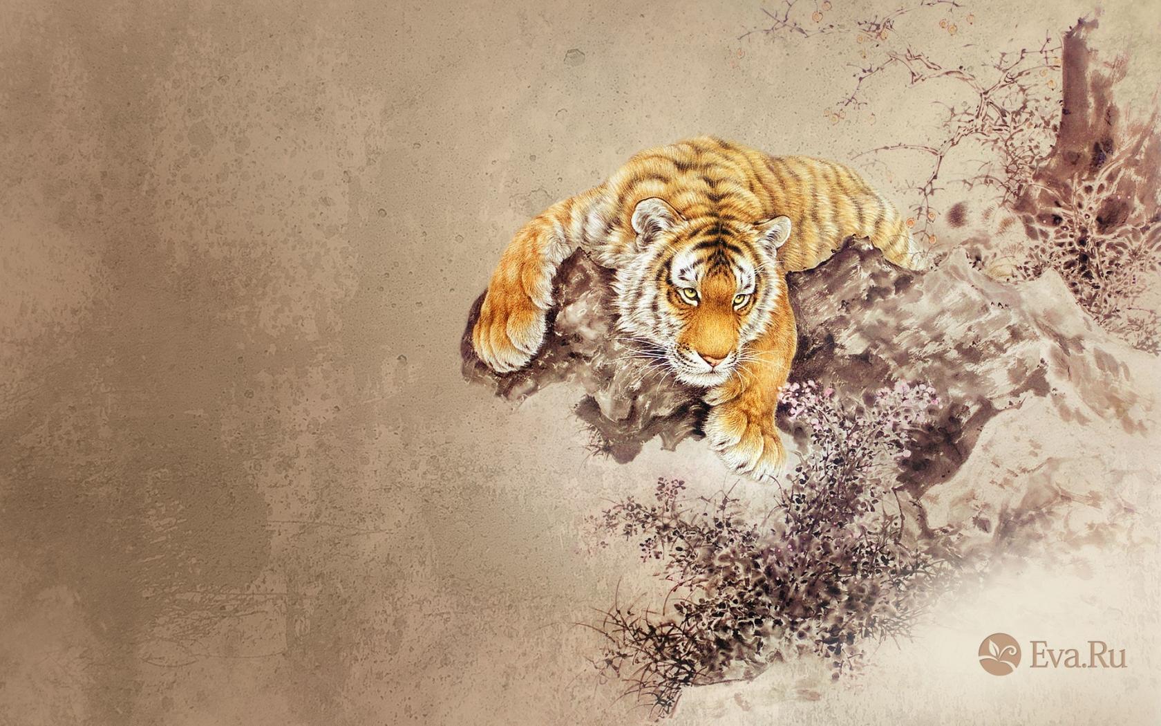 Dibujo de un tigre - 1680x1050