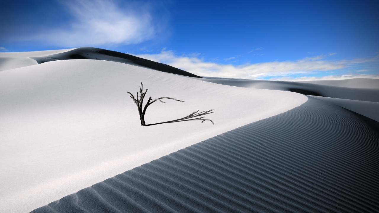 Dunas en el desierto - 1280x720