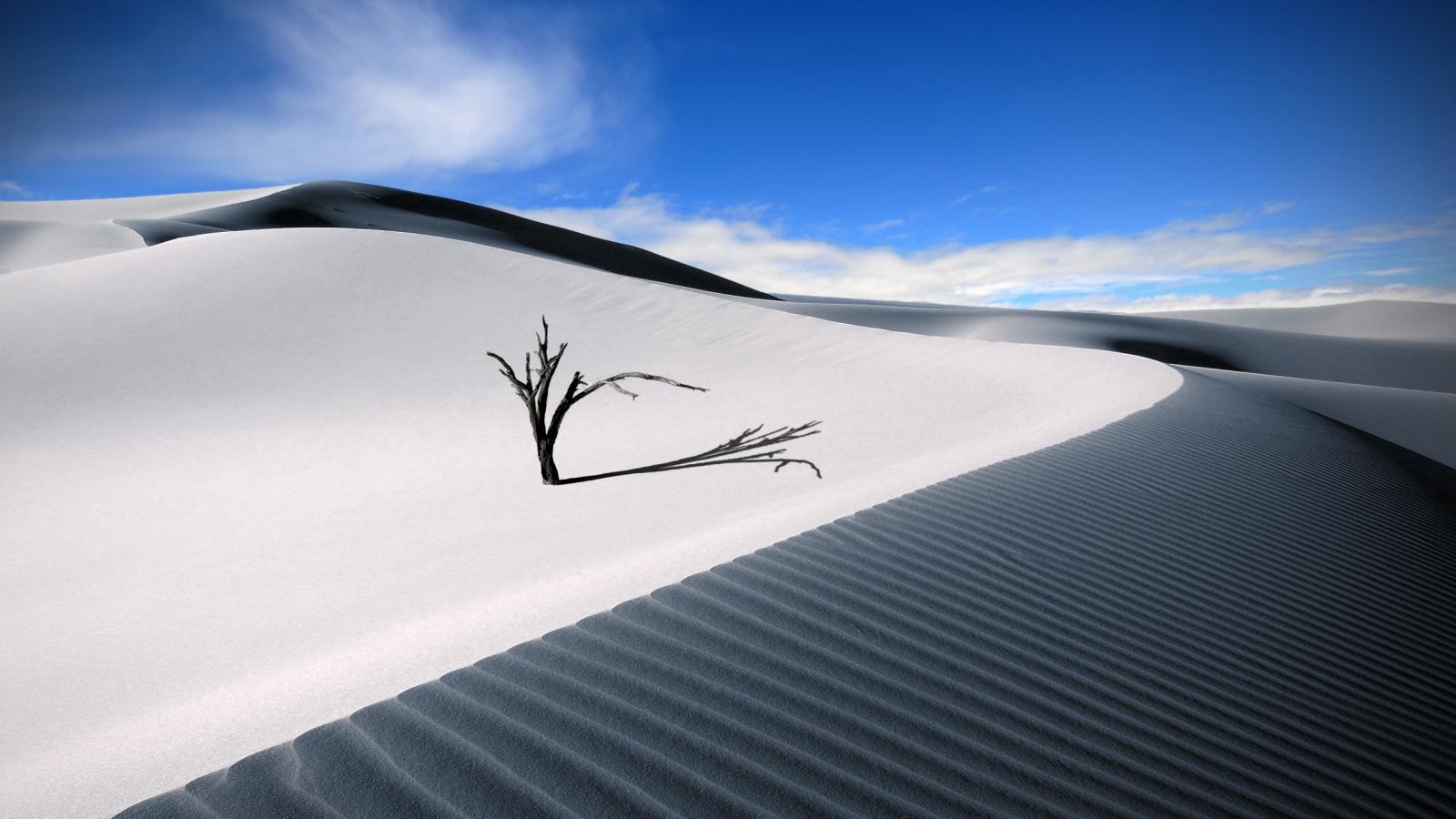 Dunas en el desierto - 1600x900