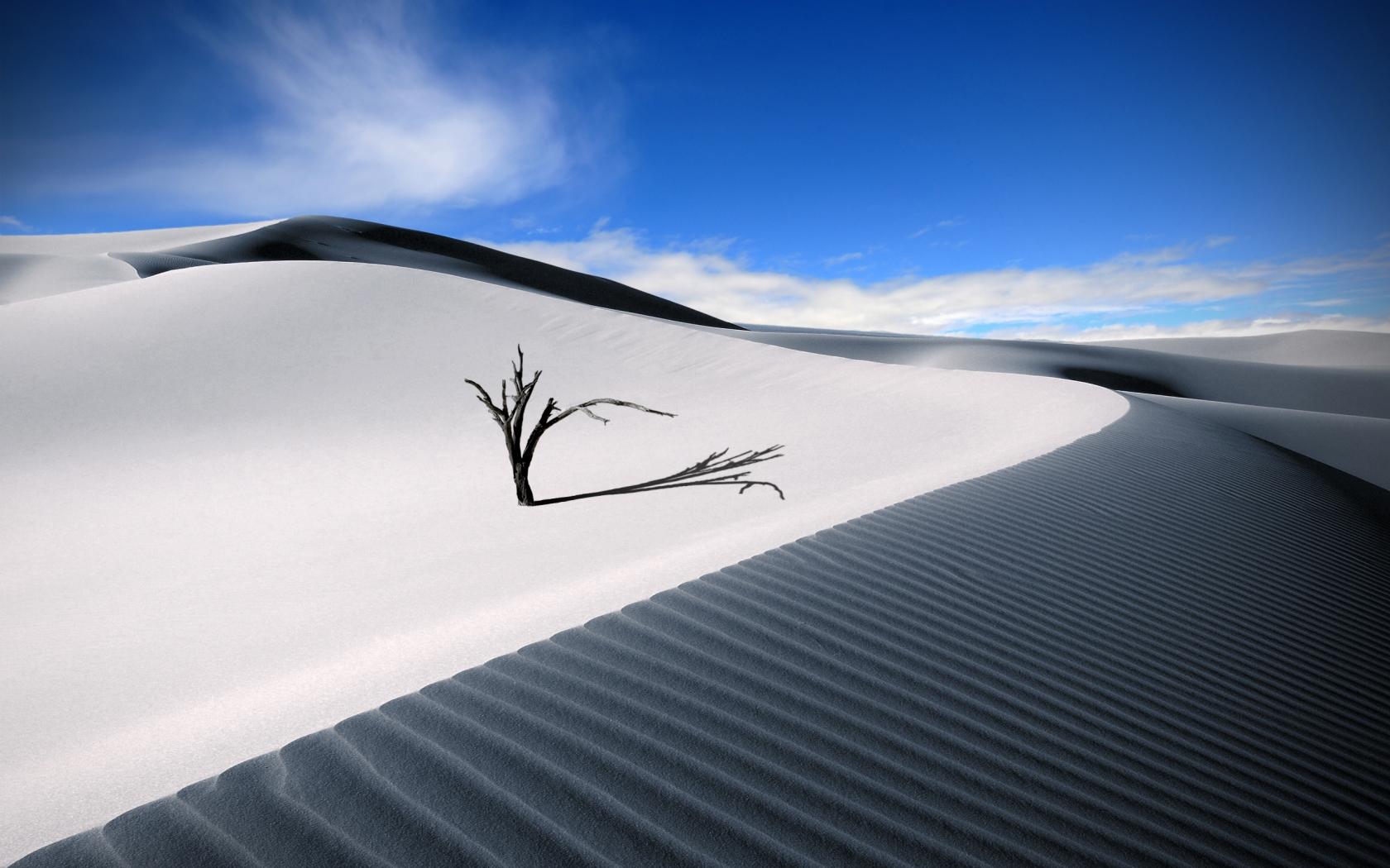 Dunas en el desierto - 1680x1050
