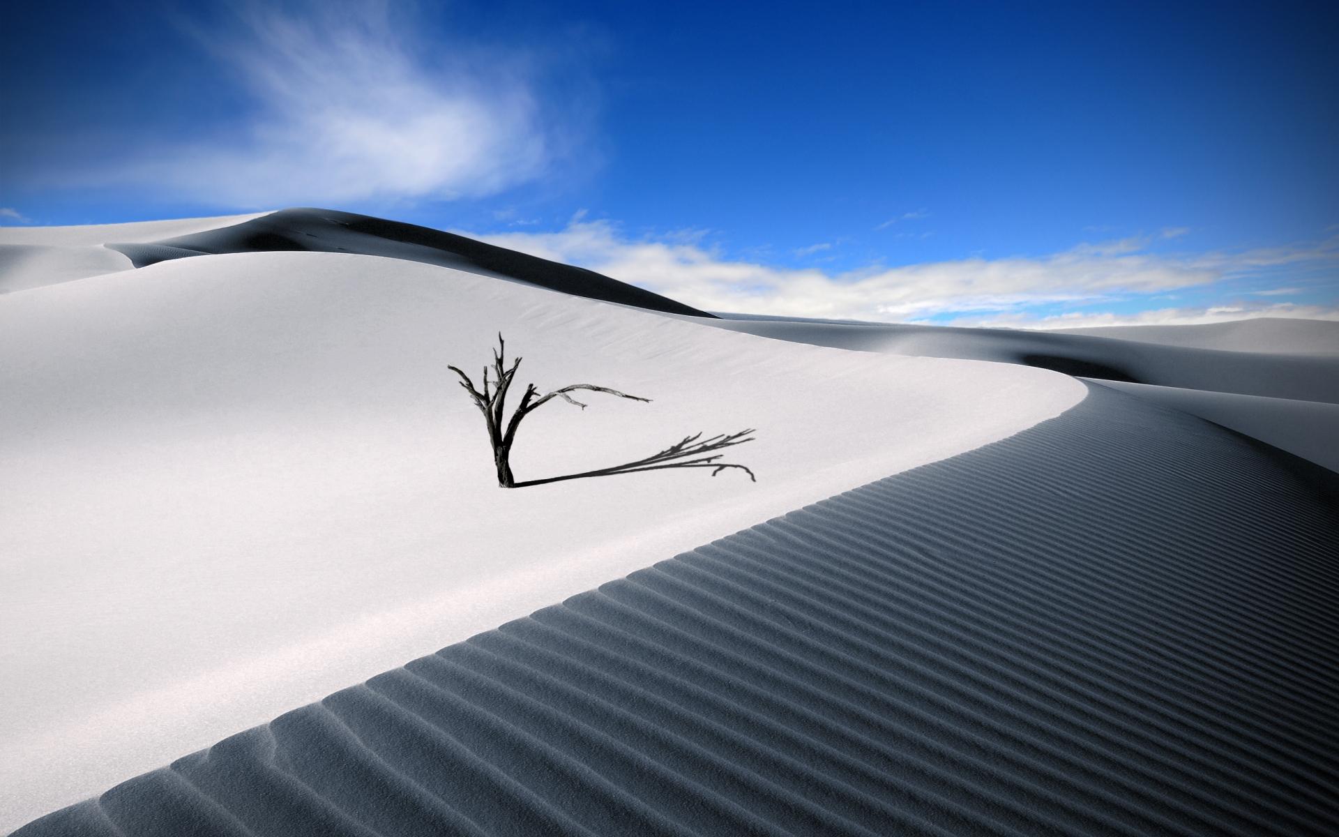Dunas en el desierto - 1920x1200