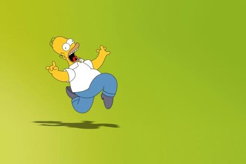 Homero Simpson - 480x320