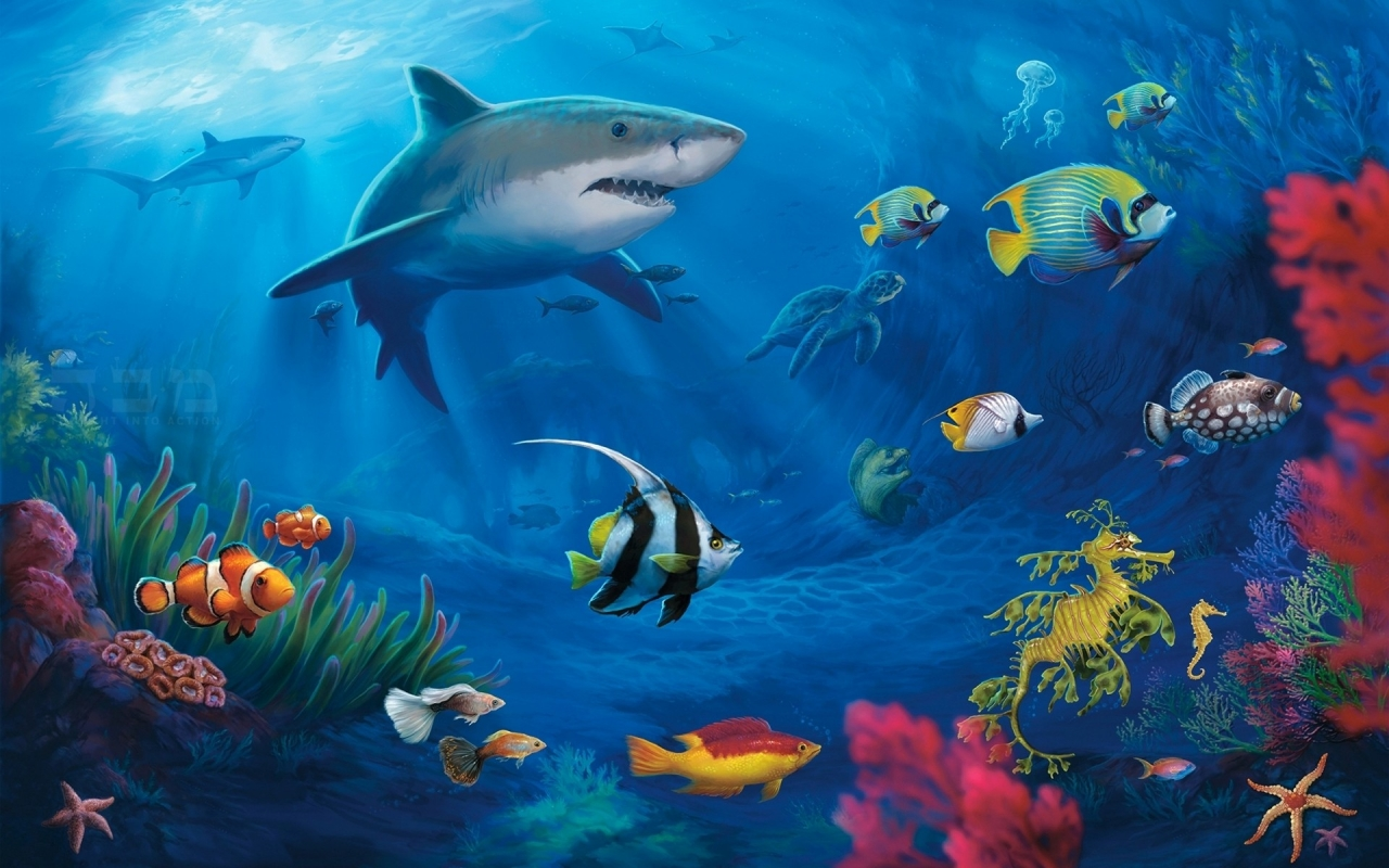 Los animales marinos - 1280x800