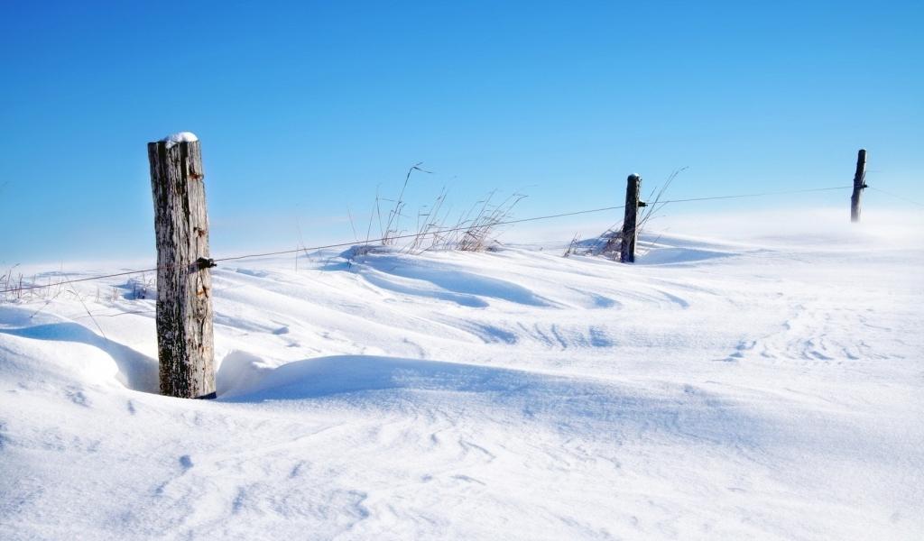 Nieve - 1024x600