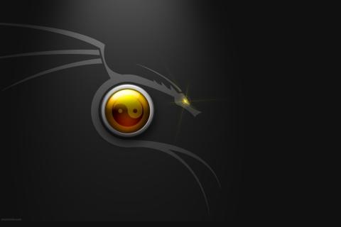 Nuevo Backtrack Linux - 480x320