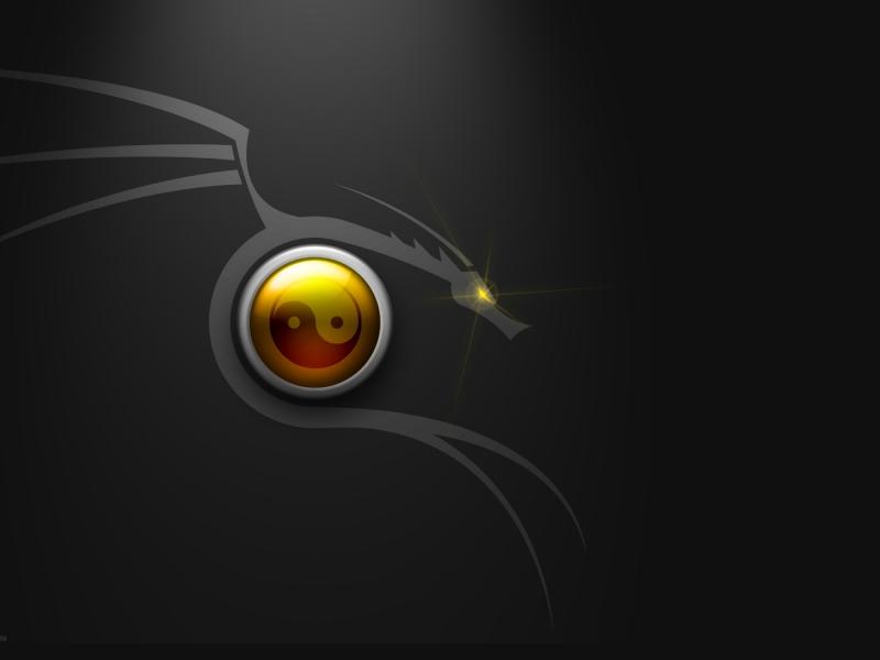 Nuevo Backtrack Linux - 800x600