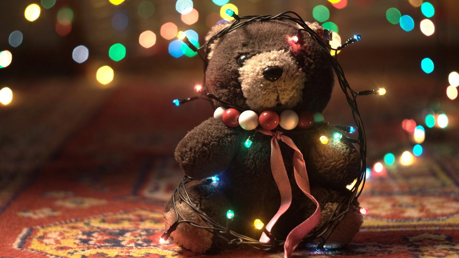 Osito y luces de navidad - 1600x900