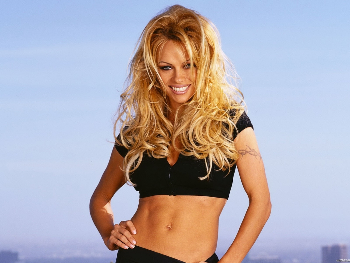 pamela anderson hd 1152x864 imagenes wallpapers gratis modelos fondos de pantallas hd 1762. Black Bedroom Furniture Sets. Home Design Ideas