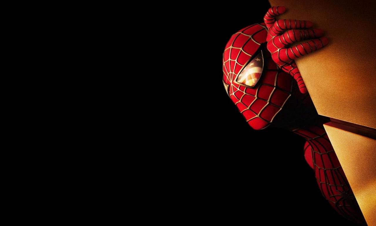 Spiderman 2013 - 1280x768