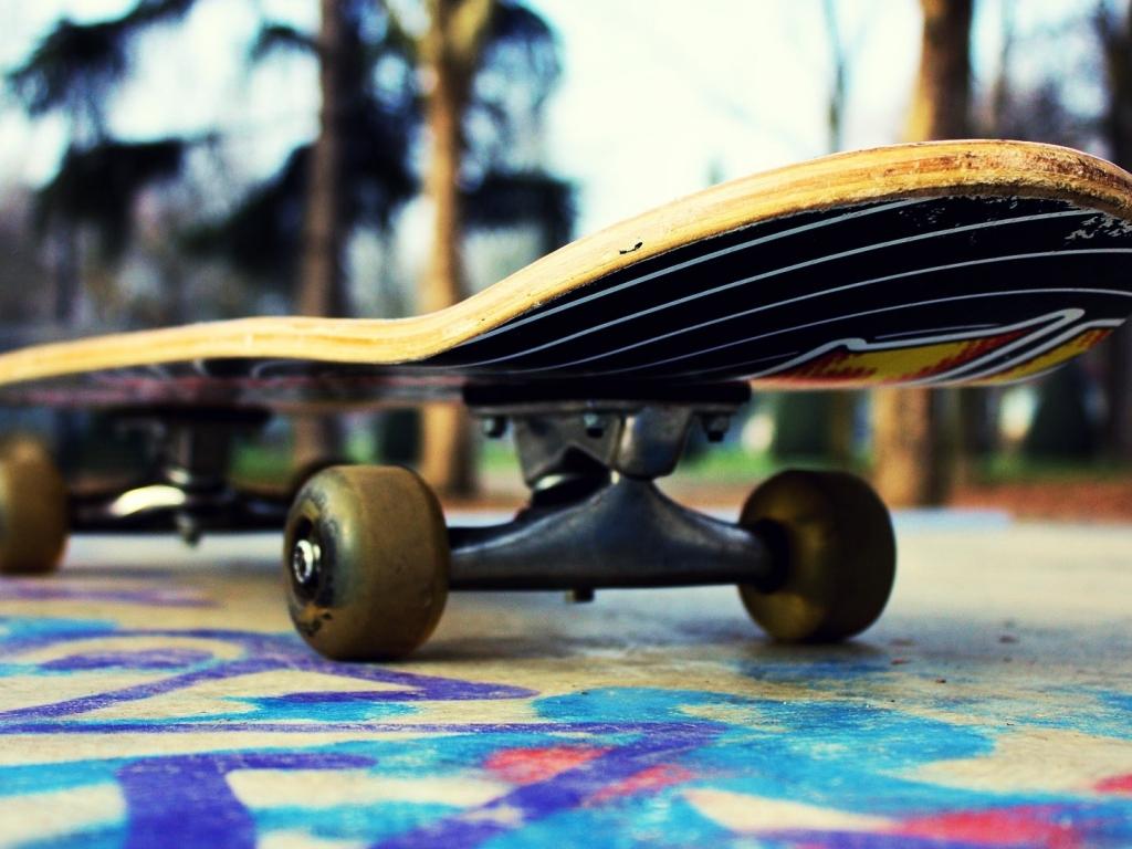 Un skate - 1024x768