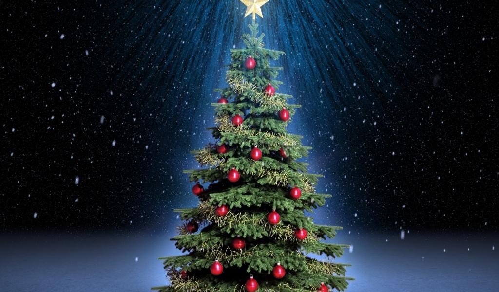 Arbol de navidad con fondo de estrellas - 1024x600