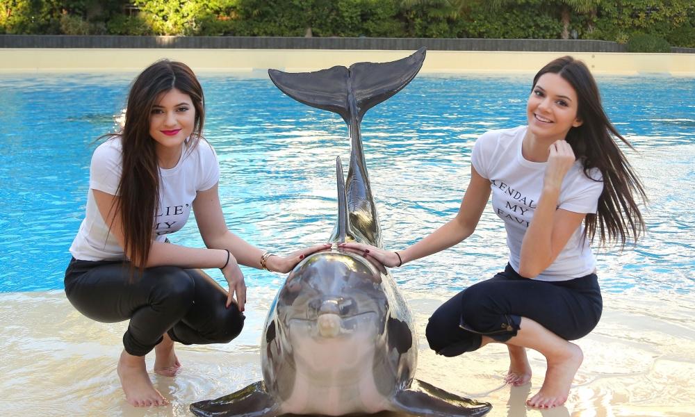 Chicas y un delfín - 1000x600