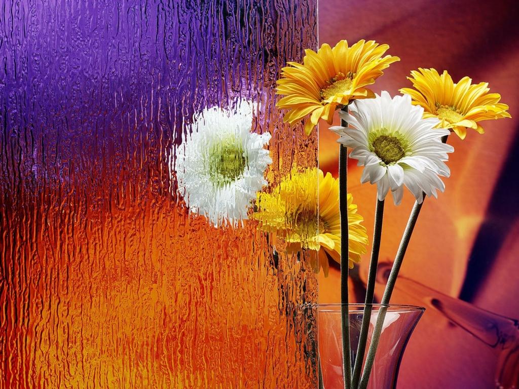 Flores en el escritorio - 1024x768