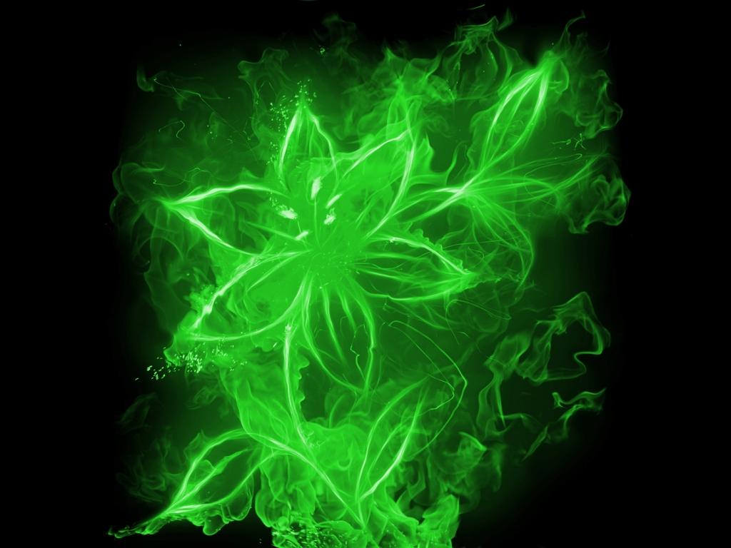 Fondo negro y flores verdes 3d hd 1024x768 imagenes for Imagenes fondo 3d