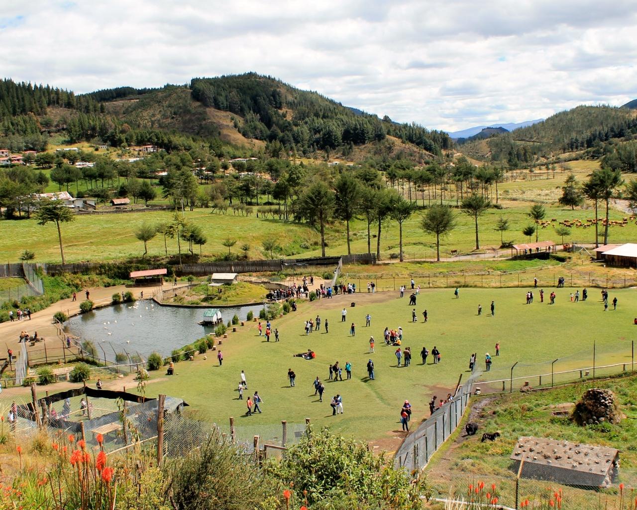 Granja Porcón en Cajamarca - 1280x1024
